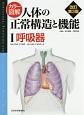カラー図解・人体の正常構造と機能 呼吸器<改訂第3版> (1)