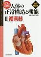 カラー図解・人体の正常構造と機能 循環器<改訂第3版> (2)