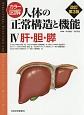 カラー図解・人体の正常構造と機能 肝・胆・膵<改訂第3版> (4)