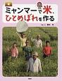 ミャンマーで米、ひとめぼれを作る 世界のあちこちでニッポン