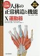 カラー図解・人体の正常構造と機能 運動器<改訂第3版> (10)