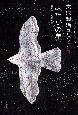 宮沢賢治コレクション よだかの星 童話3・初期短篇 (3)