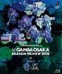 ガンバ大阪シーズンレビュー2016×ガンバTV~青と黒~