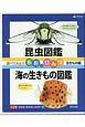 昆虫図鑑・海の生きもの図鑑 全2巻セット 調べてみよう名前のひみつ・生きもの編