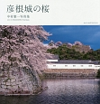 彦根城の桜 中村憲一写真集