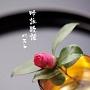 BEST SELECT LIBRARY 決定版 吟詠歌謡 ベスト