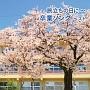 BEST SELECT LIBRARY 決定版 旅立ちの日に~卒業ソング ベスト