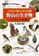 ひと目で見分ける340種 野山の生き物 ポケット図鑑