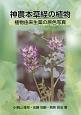 神農本草経の植物 植物由来生薬の原色写真