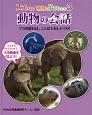 動物の会話 ゾウの群れは、ことばでおしゃべり! スゴいぞ!動物の子どもたち3