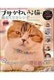 ブサかわいい猫 週めくり カレンダーMOOK ねこ界、期待のアイドル大集合ニャー!!