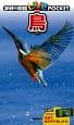 鳥 学研の図鑑LIVEポケット