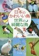 日本のかわいい鳥 世界の綺麗な鳥