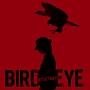 BIRD EYE(DVD付)
