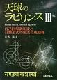 天球のラビリンス 自己回帰調和波と分数形式の加法合成原理 (3)