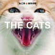 THE CATS ねこ科