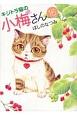 キジトラ猫の小梅さん (16)