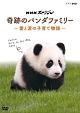 NHKスペシャル 奇跡のパンダファミリー 〜愛と涙の子育て物語〜