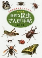 身近な昆虫さんぽ手帖<ポケット版>