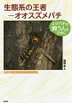 生態系の王者-オオスズメバチ ミツバチを飼う人のために