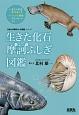 生きた化石摩訶ふしぎ図鑑 「生きもの摩訶ふしぎ図鑑」シリーズ
