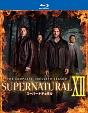 SUPERNATURAL XII <トゥエルブ・シーズン> コンプリート・ボックス