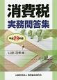 消費税実務問答集 平成29年