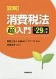 図解・消費税法「超」入門 平成29年改正