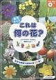 食育クイズ これは何の花? DVD-ROMつき 身近な野菜や果物が全32種!