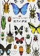 世界でいちばん素敵な 昆虫の教室