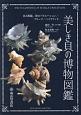 美しき貝の博物図鑑 色と模様、形のバリエーション/フリーク/ハイブリッ