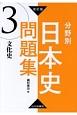 分野別日本史問題集 文化史<改訂版> (3)