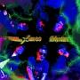 Shatter(DVD付)