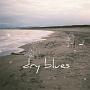 dry blues(DVD付)