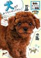 犬がおうちにやってきた! 学研の図鑑LIVE 動物の飼い方がわかるまんが図鑑