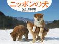 岩合光昭カレンダー ニッポンの犬 2018