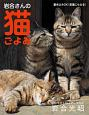 卓上カレンダー 岩合さんの猫ごよみ 2018