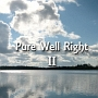 Pure Well Right II