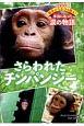 さらわれたチンパンジー 野生どうぶつを救え!本当にあった涙の物語<愛蔵版>