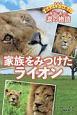 家族をみつけたライオン 野生どうぶつを救え!本当にあった涙の物語<愛蔵版>