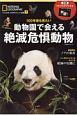 100年後も見たい 動物園で会える絶滅危惧動物 ナショナルジオグラフィック別冊7