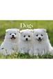 Dogsカレンダー
