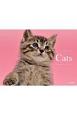 Catsカレンダー