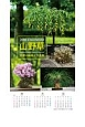 山野草 四季の鉢植え作品集 カレンダー 2018