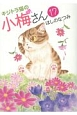キジトラ猫の小梅さん (17)
