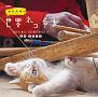 NHK 岩合光昭の世界ネコ歩き 2