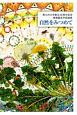 自然をみつめて 南九州大学創立50周年記念 環境園芸学部論集