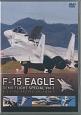 F-15 イーグル・デモフライト・スペシャル (3)