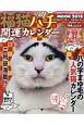 福猫ハチ 開運カレンダーMOOK 2018