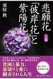 悲願花「彼岸花」と紫陽花(上)